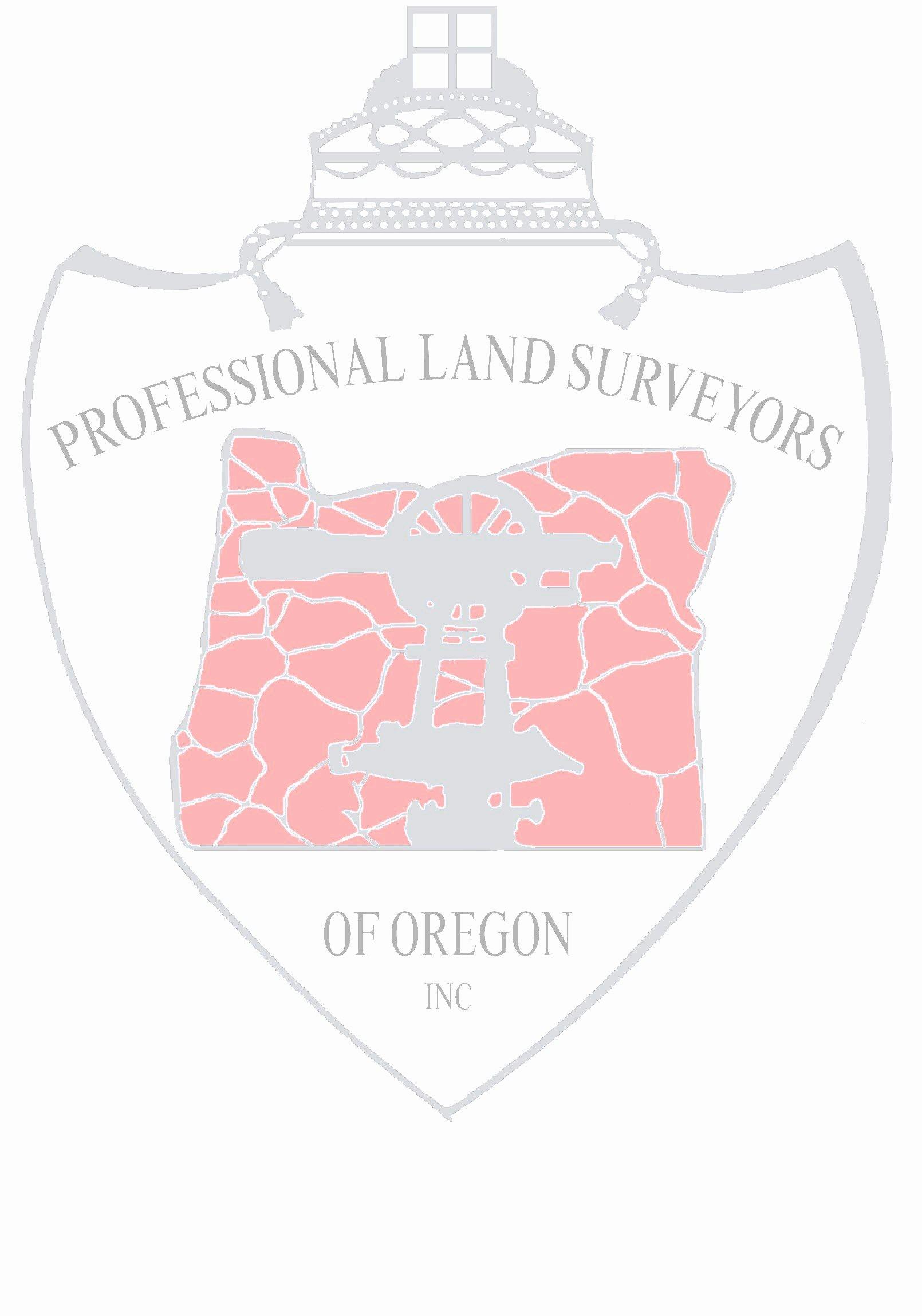 Land Surveyor Resume Pdf Top8constructionsurveyorresumesamples